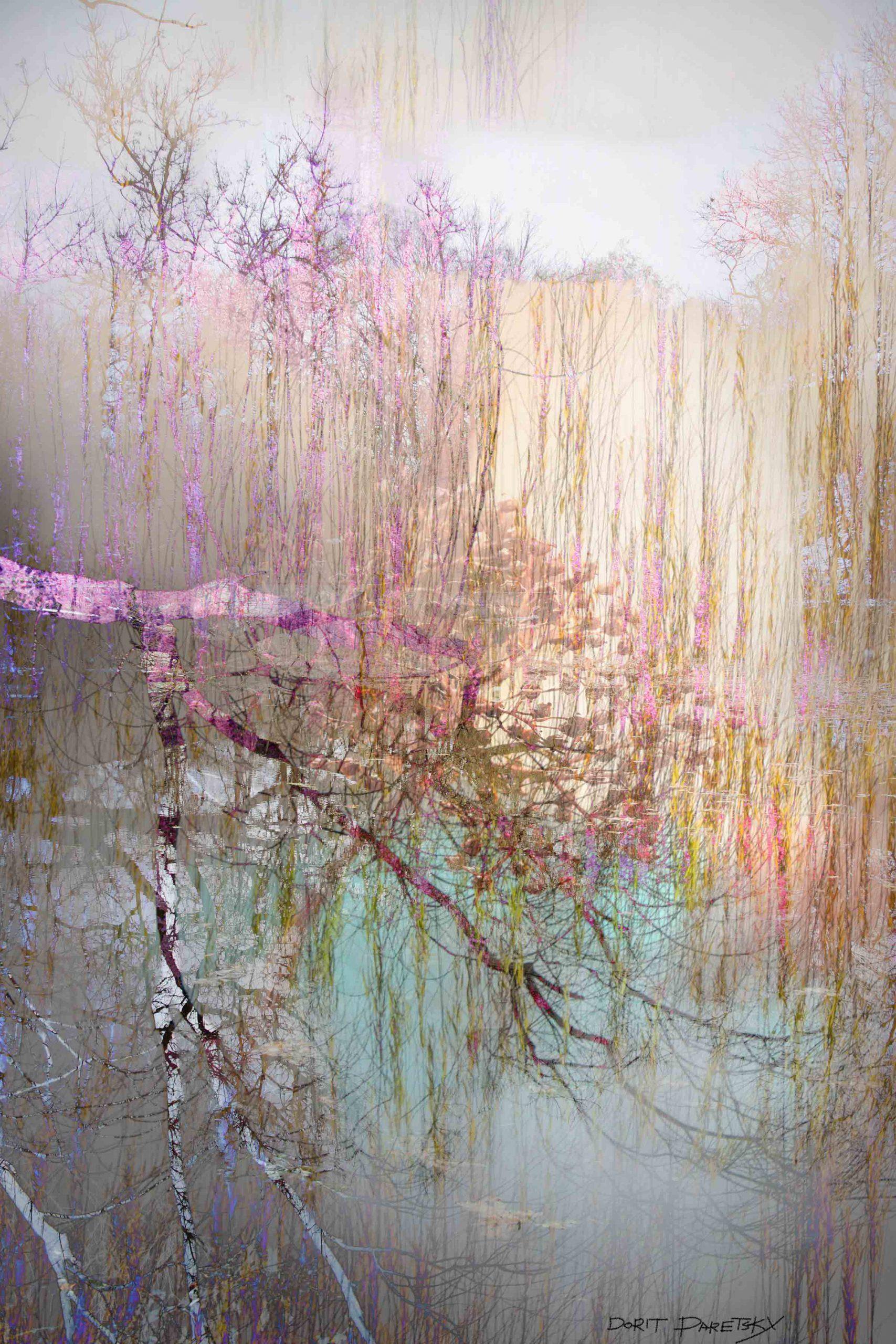 ציור דיגיטלי של ערבה הנושקת למים בצבע טורקיז