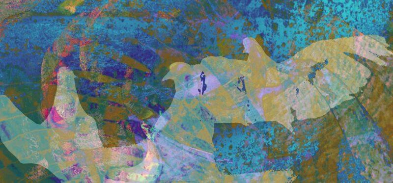 הציור יונים על רקע כחול