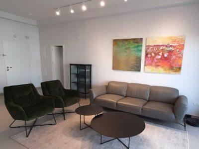 2 ציורים מעל הספה בסלון